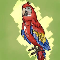 Arara(Macaw)