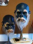 Ape's Head Painted2
