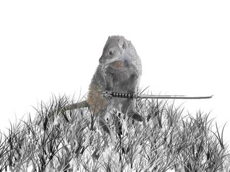 Samurai Mongoose