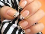 Zebra Nail Polish 5