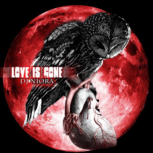 Love is gone by Niora