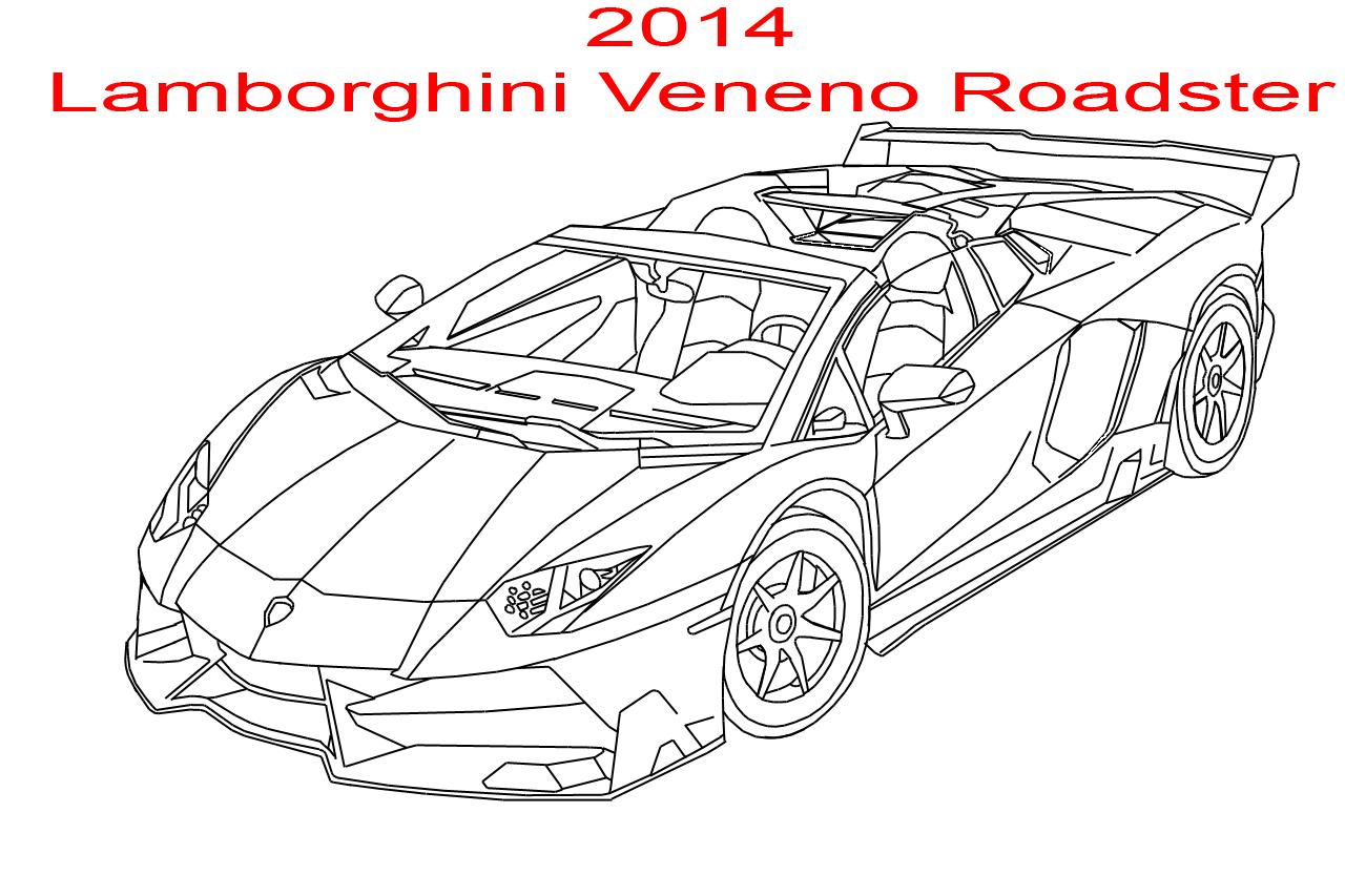 2014 Lamborghini Veneno Roadster Line Art by