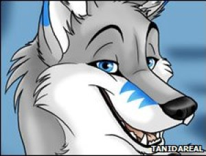slickcoolbuizle's Profile Picture