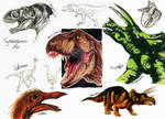 NHM Sketches: Dinosaurs 2