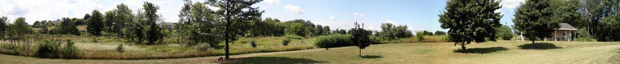 The Backyard by missheru