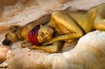 symbiose en or by poivre