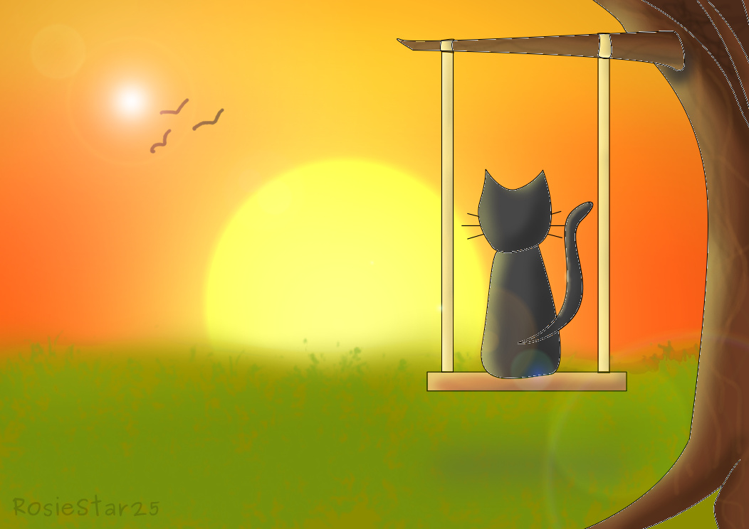 A cat looking at sunset by RosieStar25