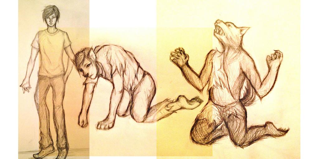 Werewolf Transformation Sequence Werewolf Transformation