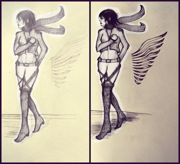 Mikasa by amirafox