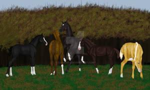 Autumn foals