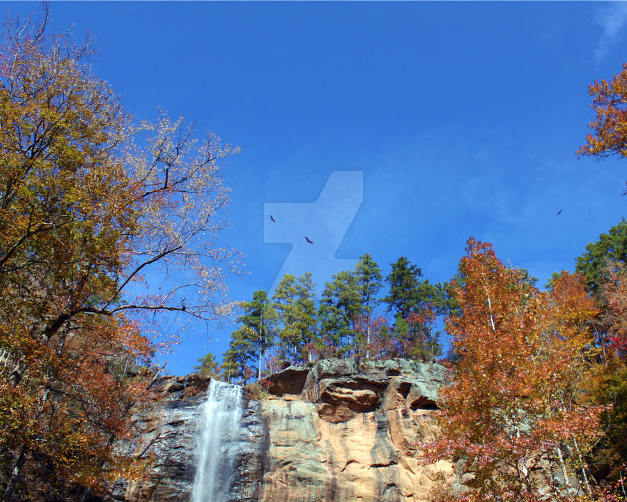 toccoa falls hindu dating site August 2016 calendar view the month calendar of august 2016 calendar including week numbers and see for each day the sunrise and sunset in august 2016 calendar.