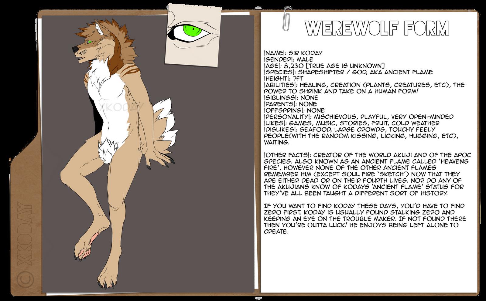 Sir Koday Werewolf Ref by xKoday