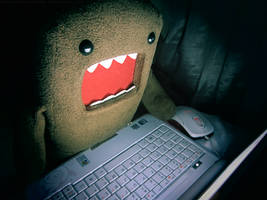 Not safe for Domo