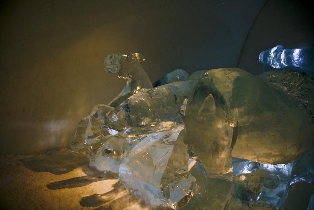ice hotel animals by summer
