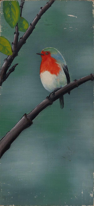 European robin by Vanxee