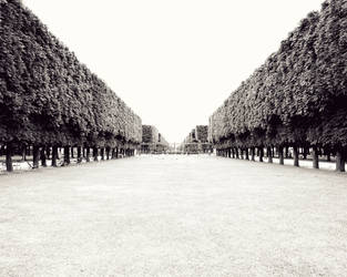 Jardin by cementum