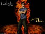 Twilight Saga-Fire