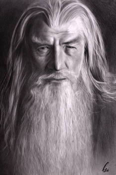 lord of the ring Gandalf pencil drawing