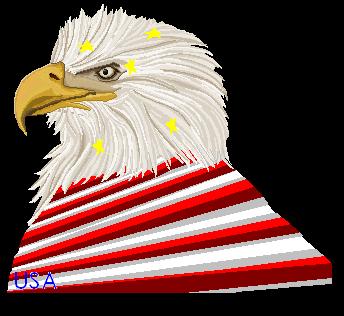 Patriotic-ism? by BlackPaperFlower