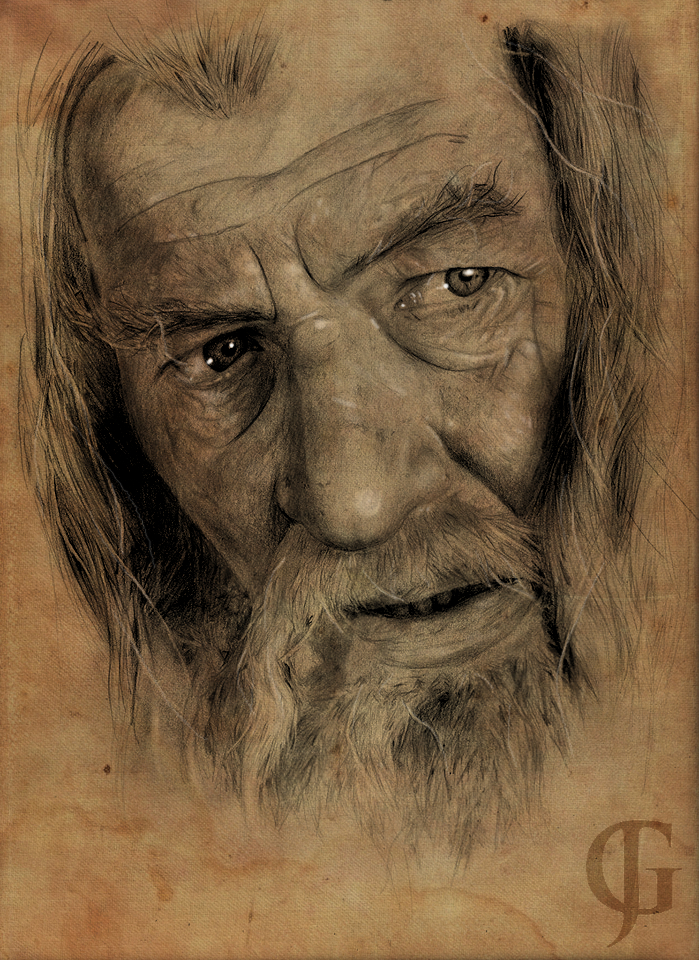Gandalf the Grey by ShotLiver