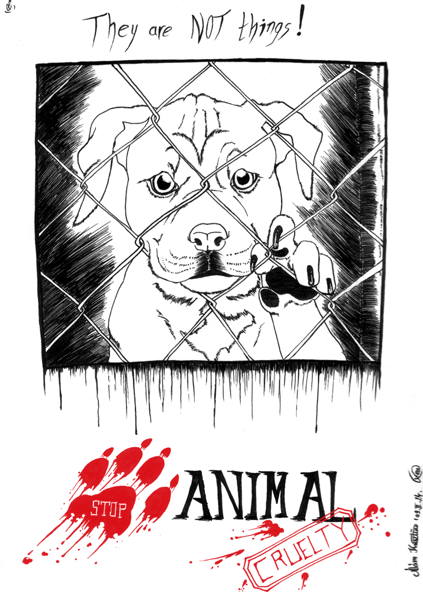 essay on animal abuse essay on animal abuse animal abuse in