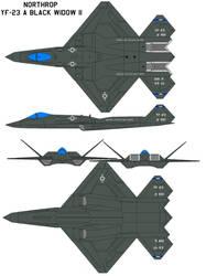 Northrop YF-23 Black Widow II by bagera3005