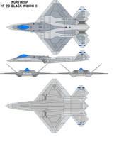 YF-23 Black Widow II by bagera3005
