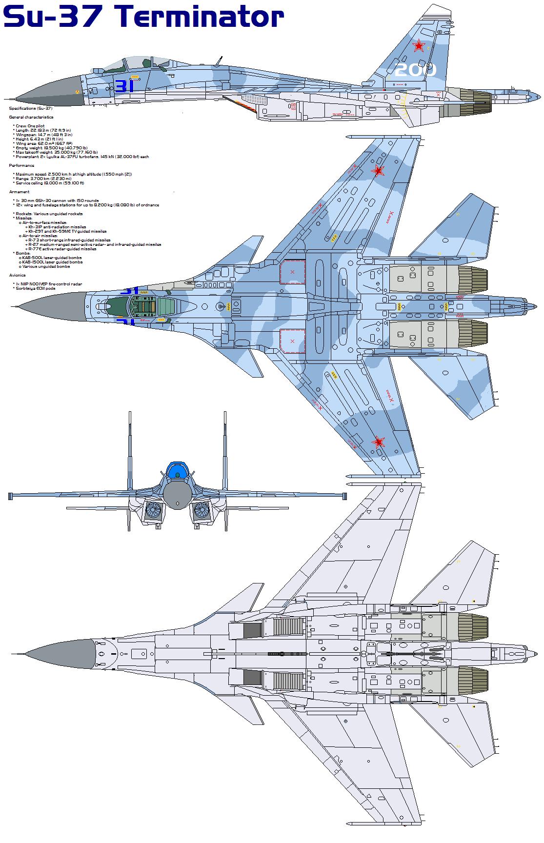 Sukhoi su 37 taringa for Architecture canard