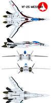 Shinsei Industry VF-25S