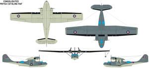 PBY5a Catalina RAF