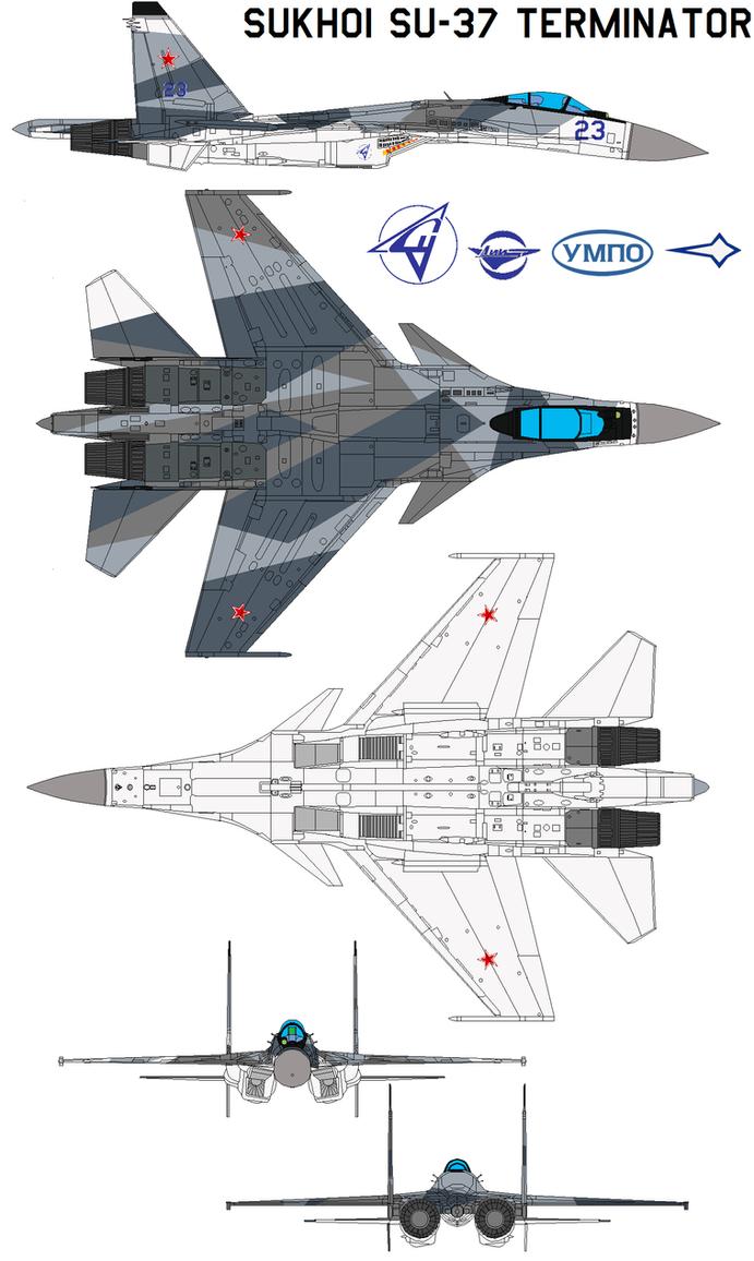 Sukhoi Su-37 Terminator by bagera3005