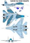 Sukhoi Su-33UB KnAAPO