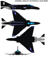 F-4N Phantom II  black bunny by bagera3005