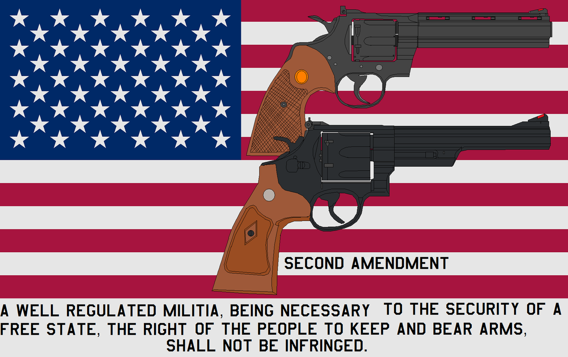 Second Amendment by bagera3005