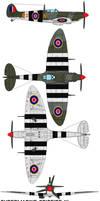 Supermarine Spitfire IV by bagera3005