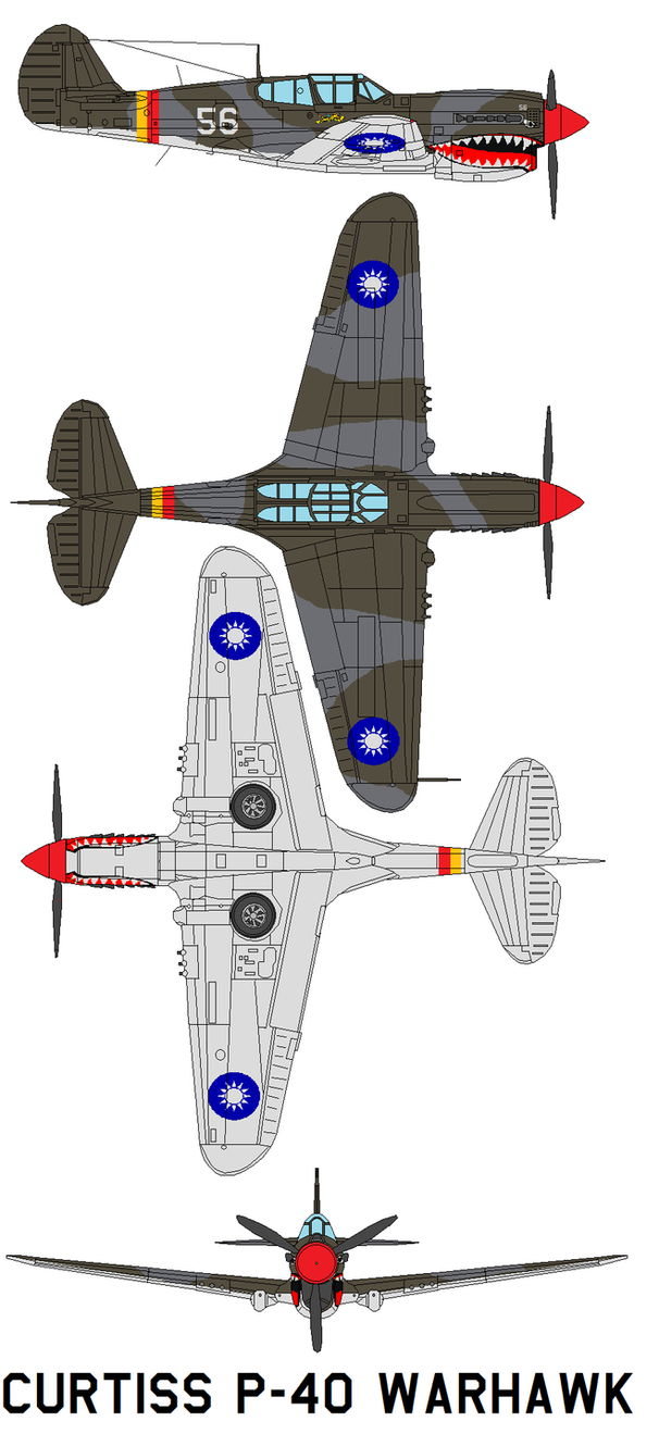 Curtiss P-40 Warhawk by bagera3005