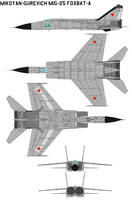 MiG-25 Foxbat A by bagera3005