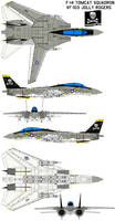 F-14  VF-84 armed