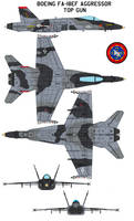 FA-18EF Aggressor  top gun