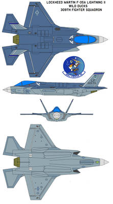 F-35A Lightning II WILD DUCKS