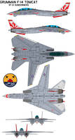 Grumman F-14 Tomcat VF-111 Sundowners