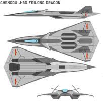 Chengdu J-30 Feilong dragon by bagera3005