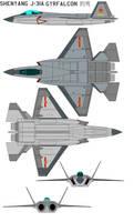 Shenyang J-31A Gyrfalcon operation
