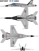 Northrop  YF-17 Cobra by bagera3005