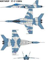 Northrop  YF-17 Cobra aircraft 2 usaf markings by bagera3005