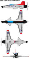 North American Aviation P-100 puma