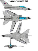 Panavia Tornado RAF by bagera3005