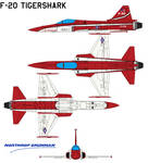 Northrop F-20 Tigershark aircraft 1