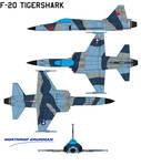 Northrop F-20 Tigershark 2 Aggressor