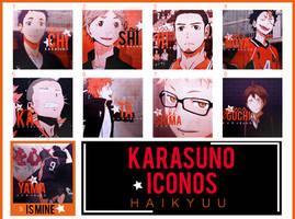 Karasuno-Iconos by Yomi-Yumi